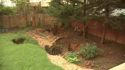 Homeowners may be responsible for repairing sinkhole damage on their properties