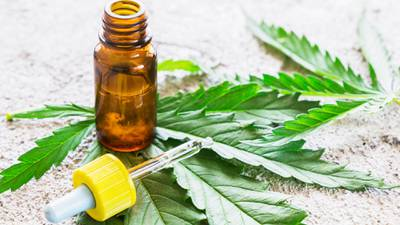 Georgia to allow six companies to legally produce, distribute medical cannabis oil