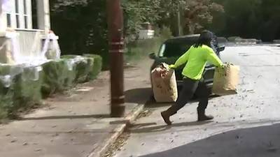 City partnering with landscaping companies to gather yard waste piling up
