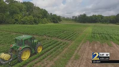 Robots and drones: Are they the future of Georgia farming?
