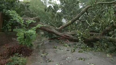 Storms leave behind damage across parts of Georgia as Fred moves out