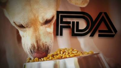 Grain-free dog food linked to heart problems in pets is puzzling situation for FDA