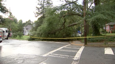 Fallen tree traps metro woman in a car as she waited for her son to be dismissed from school